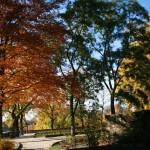 Castle garden path