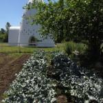 Garden & Temple